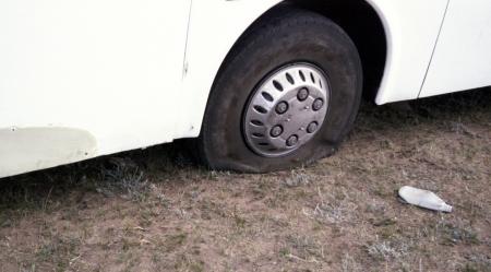 mongolia tire